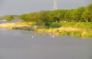 2012_lake_kasumigaura01.jpg