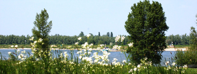 Millingen aan de Rijn 右♀左♂