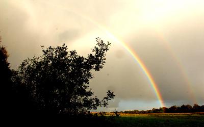 Regenbow