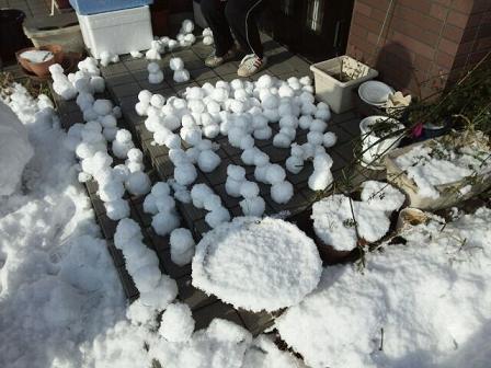 雪だるまwww