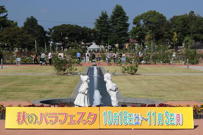 IMG_8842b.jpg