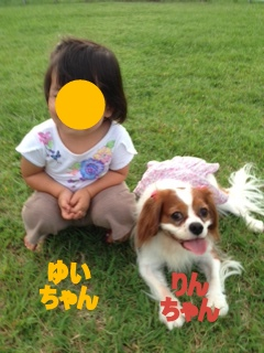 image_2013120612564956a.jpg