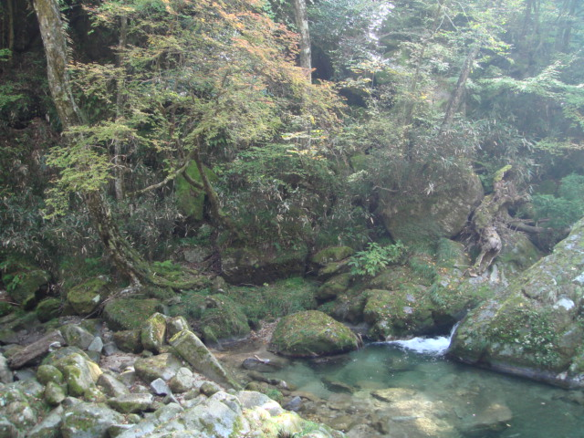 花貫渓谷1