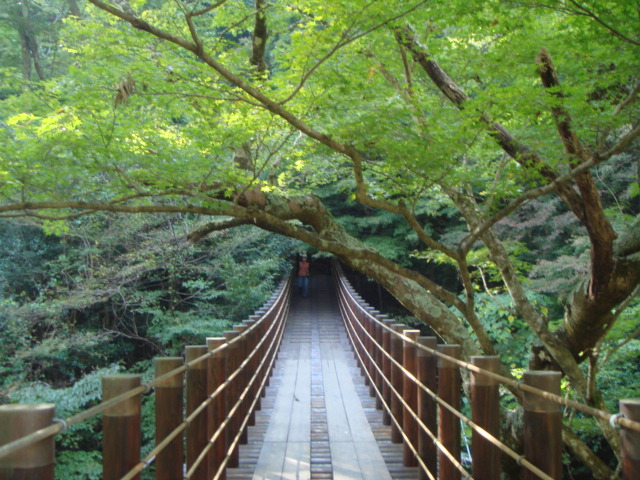 花貫渓谷汐見滝橋