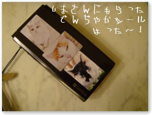 DSC00774.jpg