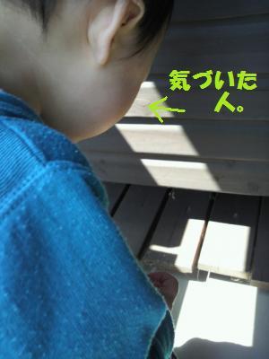2011040611180002[1]_convert_20110406201030[1]