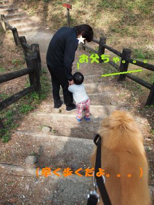 036_convert_20110417194815[1]