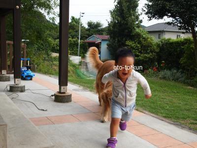 P9294516_convert_20120930091617.jpg