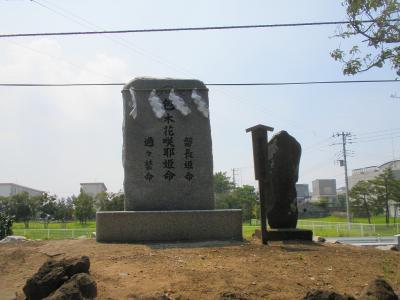 20100724 054