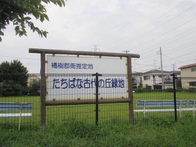 20100731 058