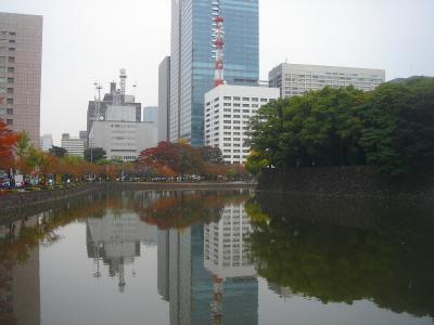 20101114 096