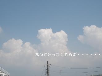 今日も暑い!!