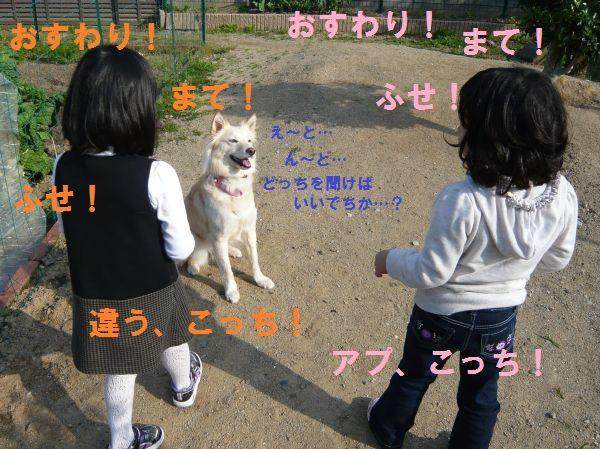 20120421_2.jpg