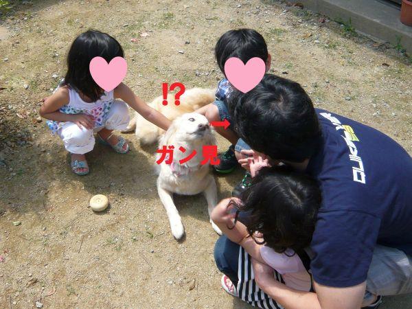 20120505_3.jpg
