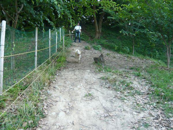 20120603_6.jpg