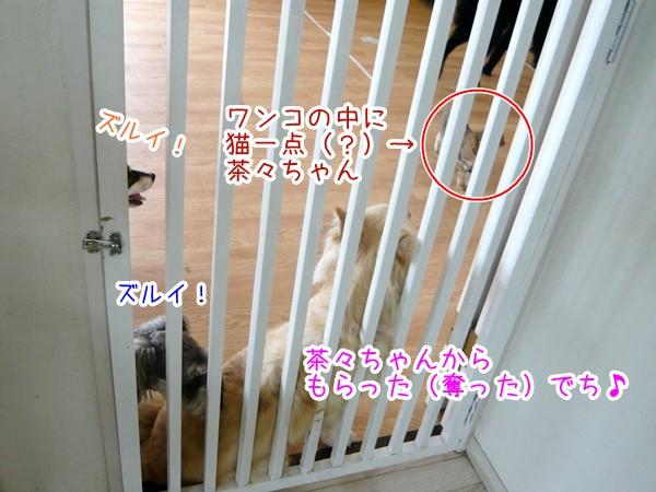 20120629_3.jpg