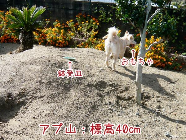 20120714_5.jpg