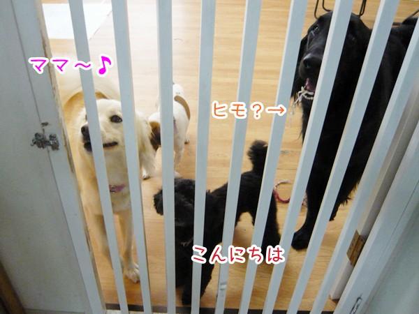 20120719_2.jpg