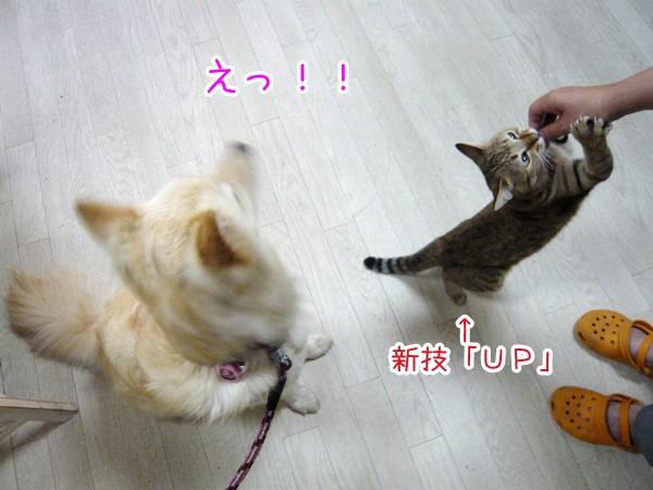 20120719_6.jpg