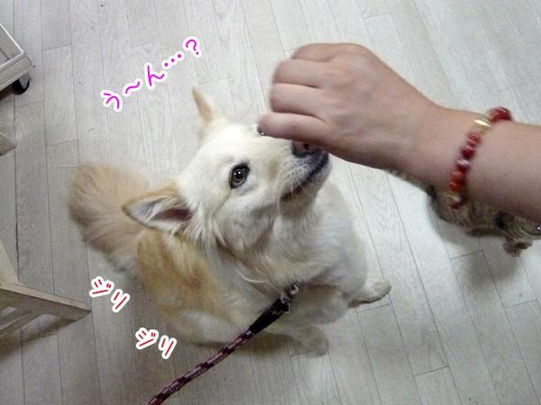 20120719_7.jpg