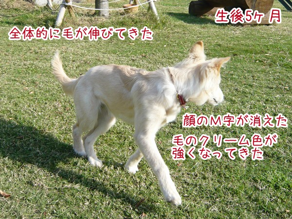 20120721_5.jpg
