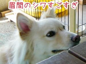 20120806_12.jpg