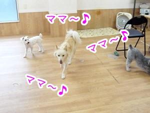 20120810_7.jpg
