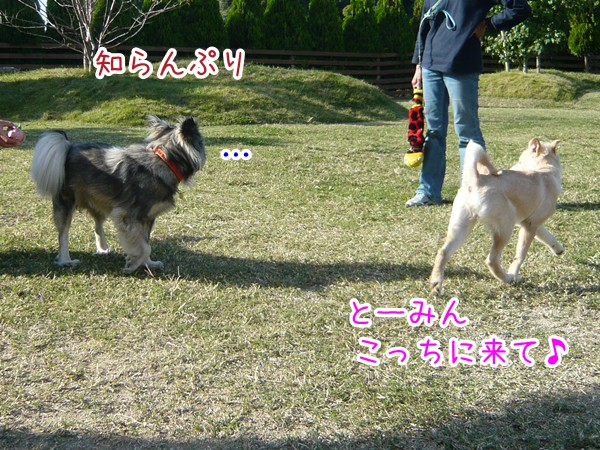 20120905_2.jpg