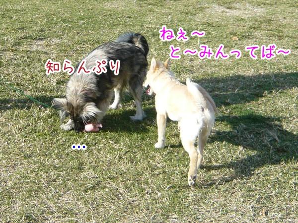 20120905_3.jpg