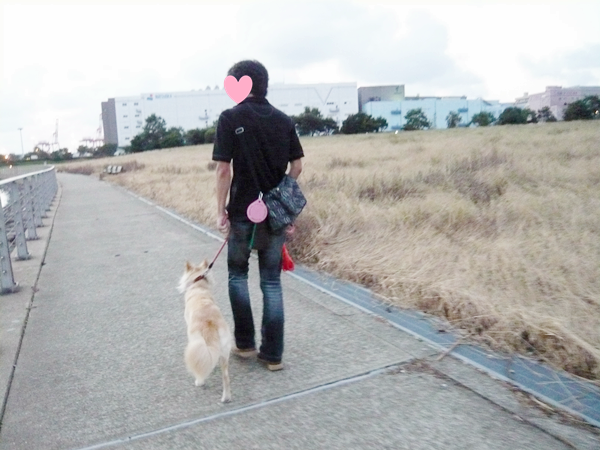 20120914_1.png