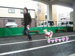 20121120_3.jpg