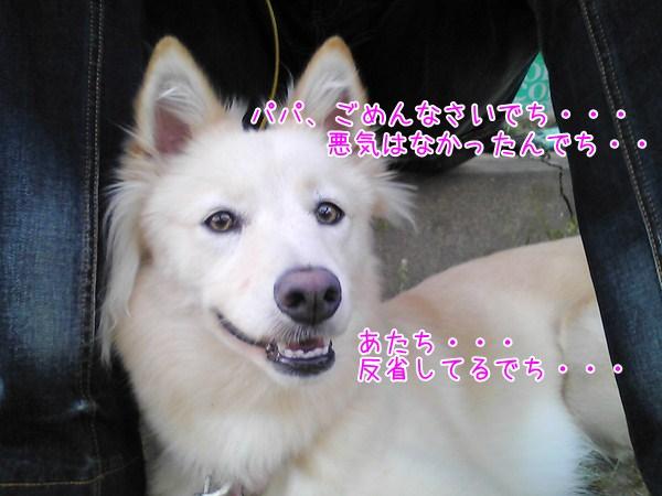 20121209_3_1.jpg