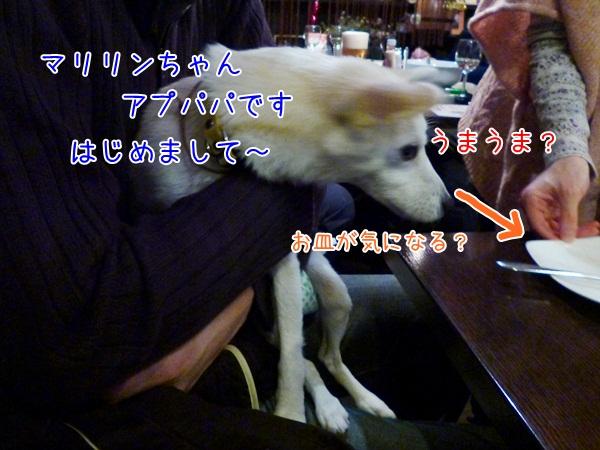 20121216_4.jpg
