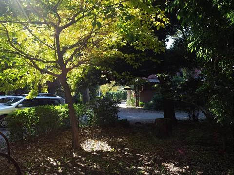 menchisuimei03.jpg