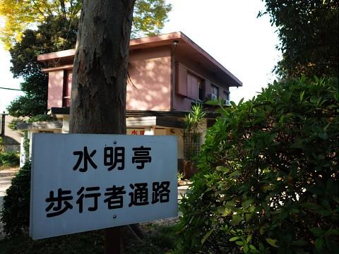 menchisuimei11.jpg