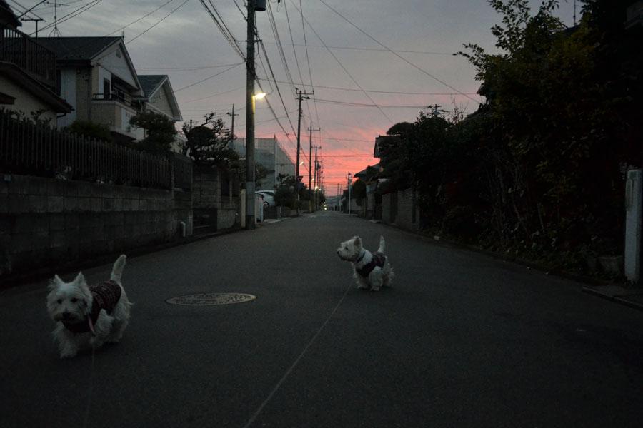 warawaranonokorimono4.jpg