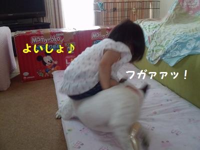 20141016014513afc.jpg
