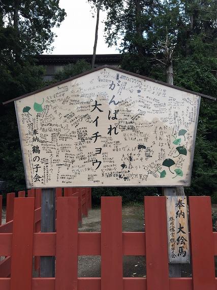 ゆうブログケロブログ鎌倉ハイク (115)
