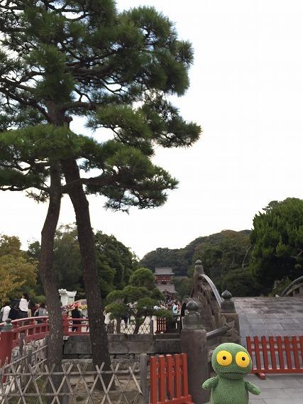 ゆうブログケロブログ鎌倉ハイク (122)