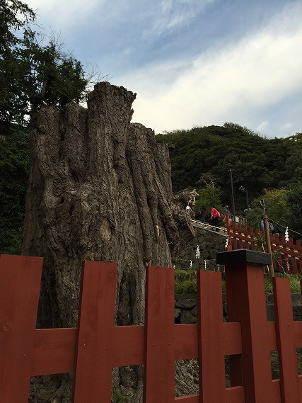 ゆうブログケロブログ鎌倉ハイク (113)
