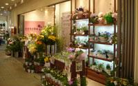 コノカ阪神西宮店
