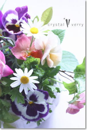 crystal-verry* クリスタルベリー *・オーナーのブログ・*-春のお花