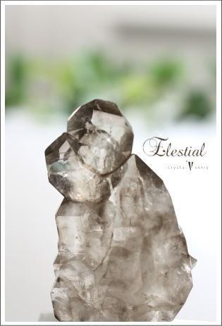 crystal-verry* クリスタルベリー *・オーナーのブログ・*-エレスチャル