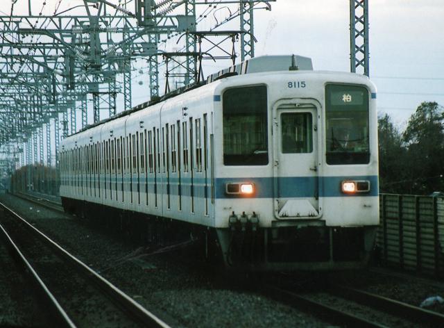 8115f.jpg