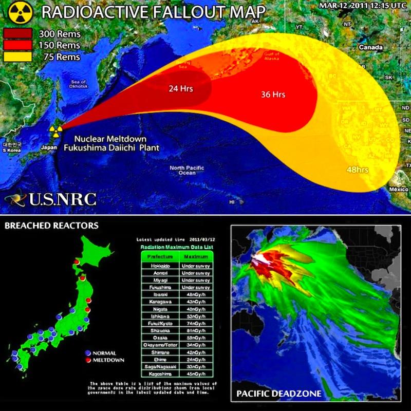Fukushima_Crisis800PX20131201.jpg