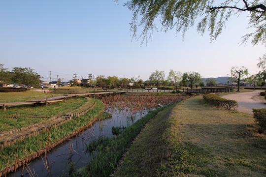 20110429_bicchu_takamatsu_castle-12.jpg