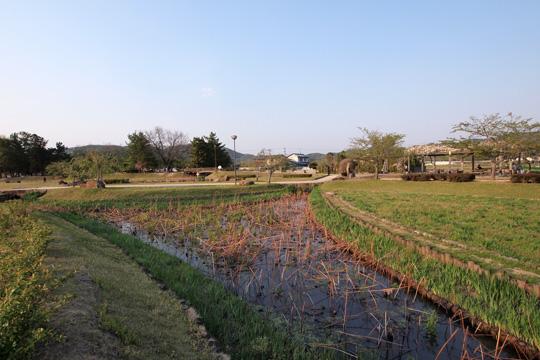 20110429_bicchu_takamatsu_castle-13.jpg