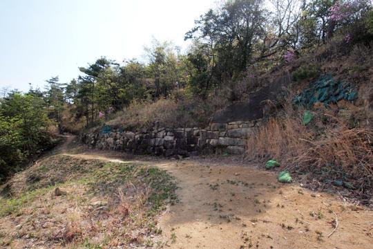 20110429_kinojo_castle-85.jpg