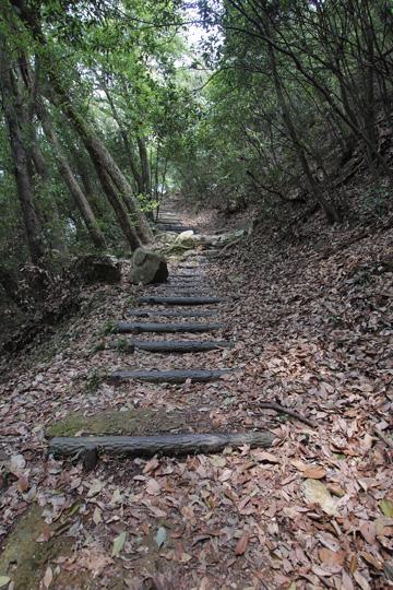 20110430_bicchu_matsuyama_castle-02.jpg
