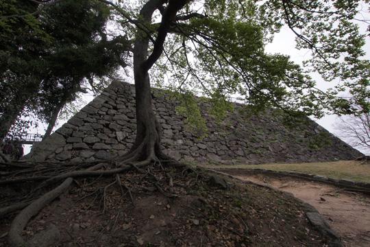 20110503_fukuoka_castle-03.jpg
